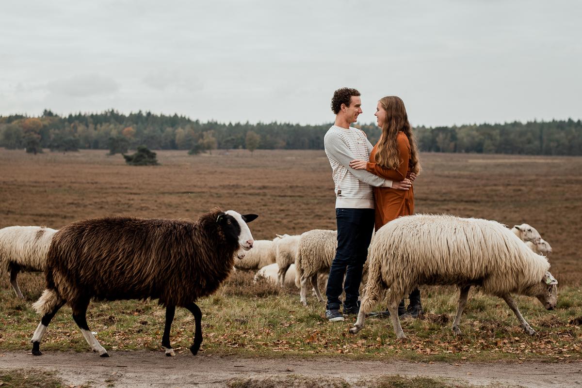 Loveshoot in de Herfst, Dayofmylife, Heerde, Loveshoot, Verloofd, Fotoshoot, Loveshoot Schaapskooi-2