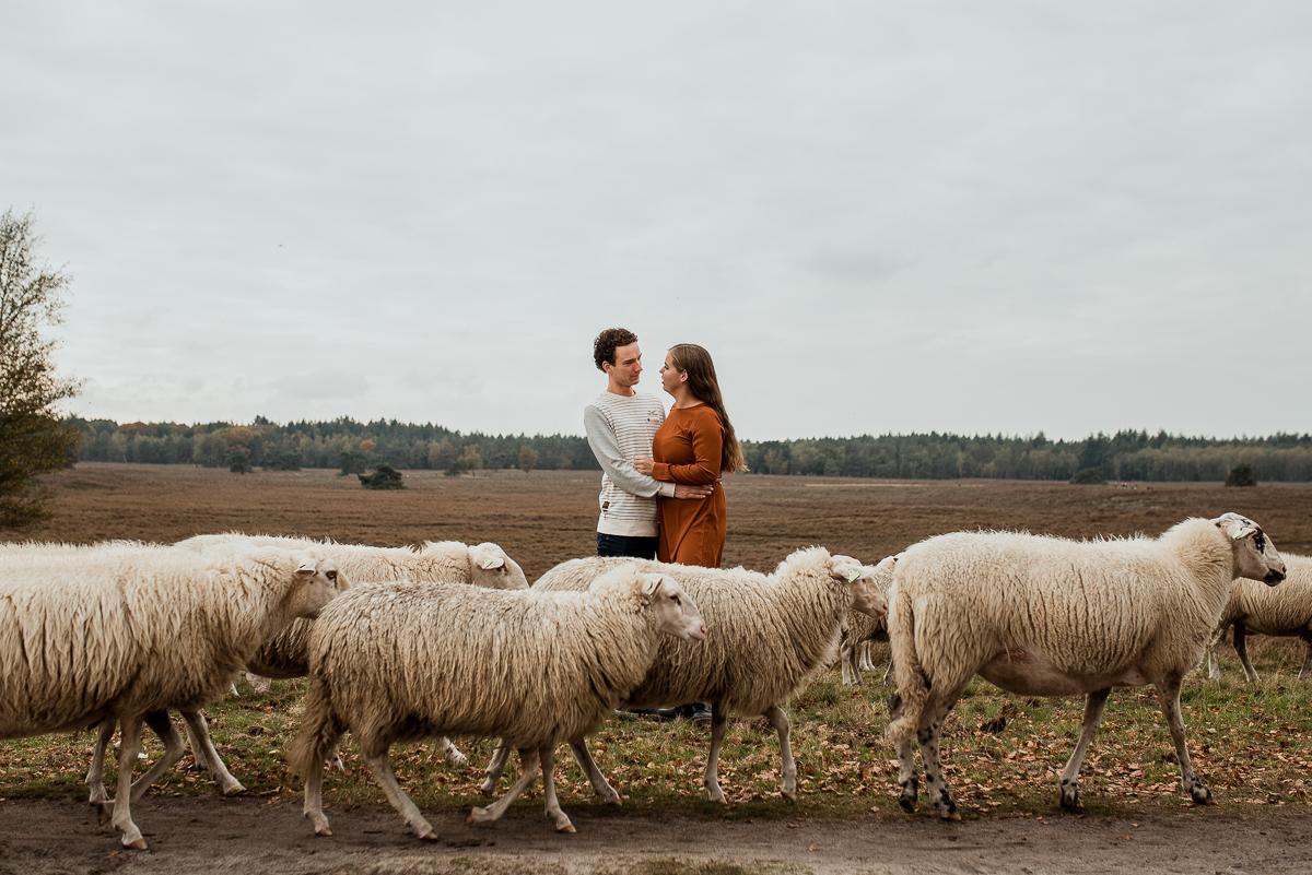 Loveshoot in de Herfst, Dayofmylife, Heerde, Loveshoot, Verloofd, Fotoshoot, Loveshoot Schaapskooi-3